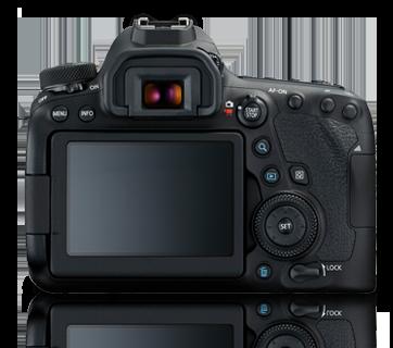 EOS 6D MK II (24-100)
